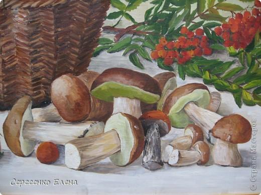 Эти натюрморты были нарисованы в прошлые годы, когда был большой урожай белых грибов. Масло. Первую картину надо было срочно нарисовать (вдохновение пришло, а грибы очень быстро пропадают),  под рукой была только фанера. Пришлось рисовать на ней. На фотографиях крупным планом, к сожалению, видна фактура фанеры. Знаю, некрасиво. Но, картина висит дома, поэтому так и осталась на этом материале. фото 2