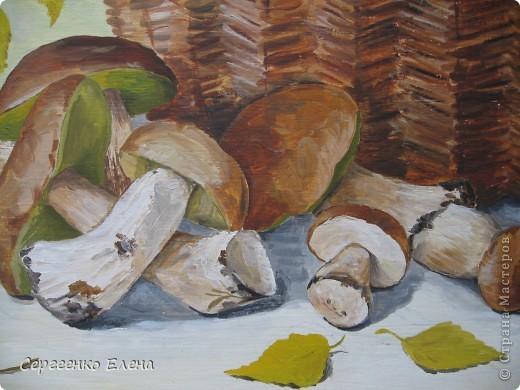 Эти натюрморты были нарисованы в прошлые годы, когда был большой урожай белых грибов. Масло. Первую картину надо было срочно нарисовать (вдохновение пришло, а грибы очень быстро пропадают),  под рукой была только фанера. Пришлось рисовать на ней. На фотографиях крупным планом, к сожалению, видна фактура фанеры. Знаю, некрасиво. Но, картина висит дома, поэтому так и осталась на этом материале. фото 9
