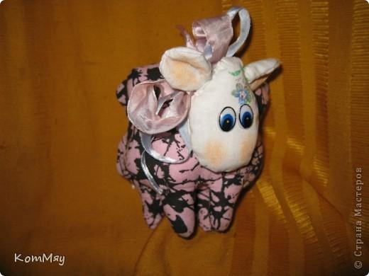 Сшилась такая маленькая овечка по имени Долли. фото 4