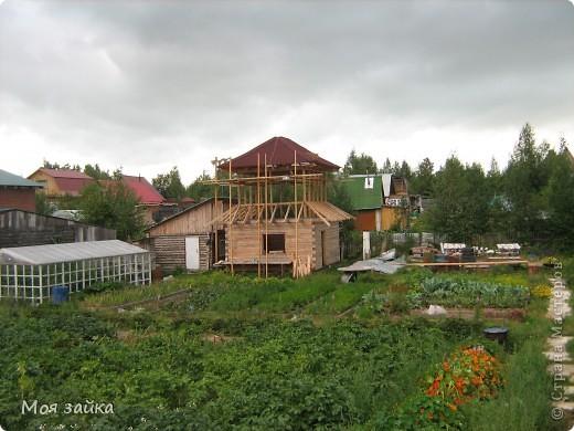 Так выглядит крыша сейчас. Законсервирована до весны. фото 5
