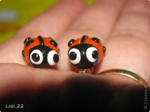 Влюбилась в пингвинов у simka9416 http://stranamasterov.ru/node/152547 фото 7