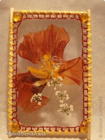 """Миниатюры """" Воспоминание о лете"""" ............ засушеные цветы...........ламинат..........деревянные шпажки.......нитки мулине.............  длина 10 см......... фото 1"""