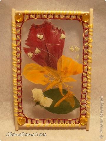 """Миниатюры """" Воспоминание о лете"""" ............ засушеные цветы...........ламинат..........деревянные шпажки.......нитки мулине.............  длина 10 см......... фото 4"""