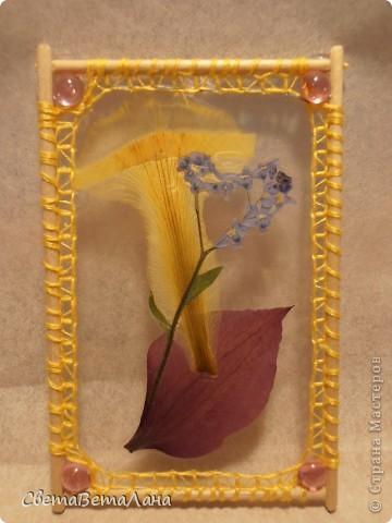 """Миниатюры """" Воспоминание о лете"""" ............ засушеные цветы...........ламинат..........деревянные шпажки.......нитки мулине.............  длина 10 см......... фото 5"""