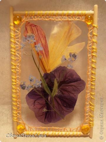 """Миниатюры """" Воспоминание о лете"""" ............ засушеные цветы...........ламинат..........деревянные шпажки.......нитки мулине.............  длина 10 см......... фото 6"""