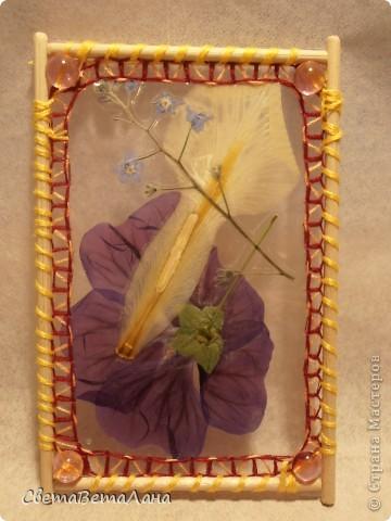 """Миниатюры """" Воспоминание о лете"""" ............ засушеные цветы...........ламинат..........деревянные шпажки.......нитки мулине.............  длина 10 см......... фото 7"""