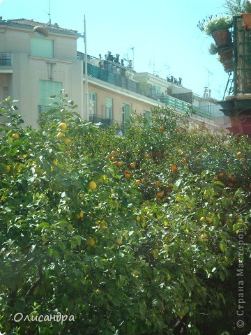 Ницца – один из красивейших уголков Франции, была основана в 5 веке до н. э. греками. Название произошло от имени богини победы – Ники.  В 19 веке отдыхать в Ницце полюбила сначала английская, а потом и французская аристократия.  фото 4