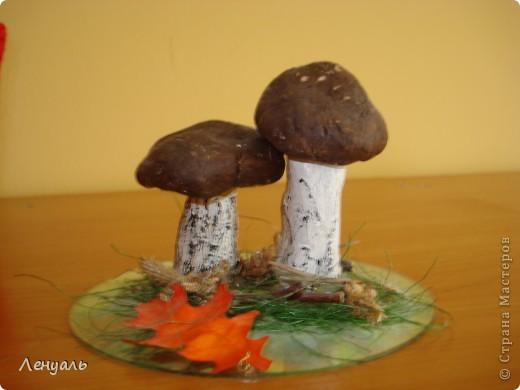 Мои осенние грибочки.Делала я их из соленого теста,потом раскрасила гуашью и приклеила их горячим клеем к диску.На диск я положила немного сезаля,приклеила осенний листик и веточку.Можно также приклеить шишку. фото 1