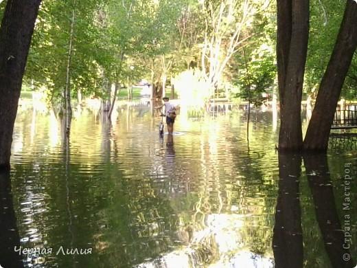 Раскинулось море широко.... В центре одного из парков  Белгорода! )) фото 5