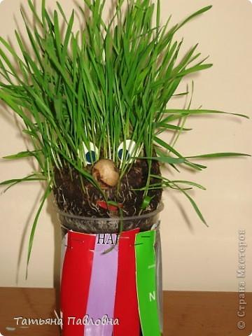 Зелень натуральная. фото 4