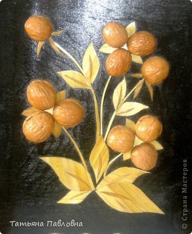 Картины из соломки . фото 3