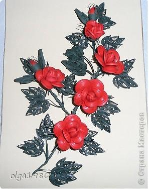 Очень долго смотрела на розы и вот решилась. фото 2