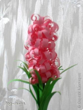 """Гиацинт - цветок любви, счастья, верности и... скорби Название цветка """"гиацинт"""" по-гречески означает """"цветок дождей"""", но греки одновременно называли его цветком печали и еще цветком памяти о Гиацинте. С названием этого растения связана греческая легенда. В Древней Спарте Гиацинт некоторое время был одним из наиболее значимых богов, но постепенно слава его поблекла и его место в мифологии занял бог красоты и солнца Феб, или Аполлон. Легенда о Гиацинте и Аполонне в течение тысячелетий остается одной из самых известных историй о происхождении цветов. Любимцем бога Аполлона был юноша по имени Гиaцинт. Часто Гиацинт с Аполлоном устраивали спортивные состязания. Однажды, во время спортивных состязаний, Аполлон метал диск и случайно бросил тяжелый диск прямо на Гиацинта. Капли крови брызнули на зеленую траву и спустя некоторое время в ней выросли ароматные лилово-красные цветы. Словно множество миниатюрных лилий было собрано в одно соцветие (султан), а на их лепестках было начертано горестное восклицание Аполлона. Этот цветок высокий и стройный, древние греки и называют гиацинтом. Память о любимце Аполлон увековечил этим цветком, который вырос из крови юноши. В той же Древней Греции гиацинт считался символом умирающей и воскресающей природы. На знаменитом троне Аполлона в городе Амикли изображалось шествие Гиацинта на Олимп; по преданию, основание статуи Аполлона, восседающего на троне, представляет собой жертвенник, в котором захоронен погибший юноша.  С сайта florets.ru  фото 2"""