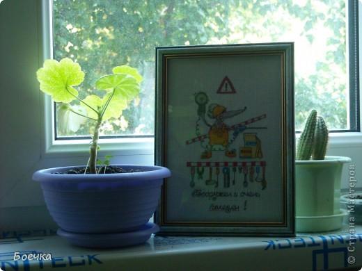 Вышивала Мыша в подарок мужу фото 2