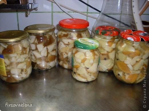 Не напрягаясь заготовила грибочков. фото 4