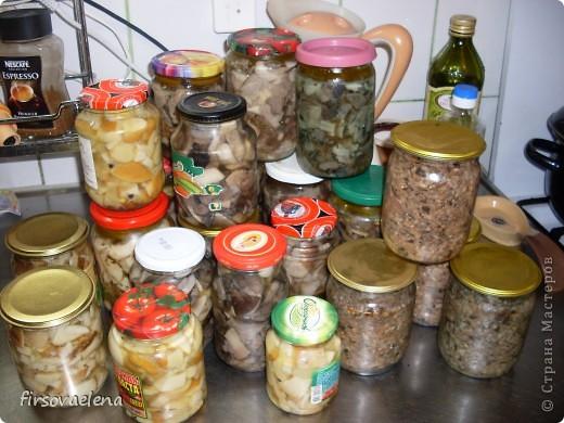 Не напрягаясь заготовила грибочков. фото 1