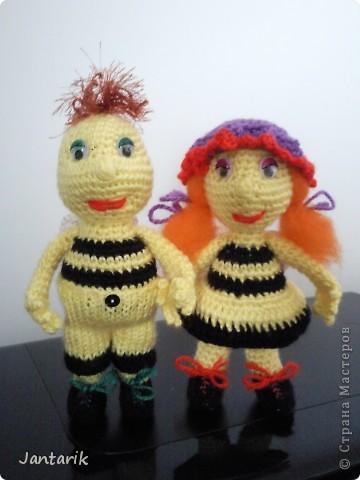 Вот семейство пчёлок-к двум уже знакомым вам пчелятам прибавилась ещё парочка-пчёлка Майя и Толстячёк. фото 5