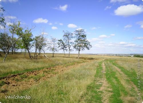 Мой поселок - Верхнезареченский (раньше назывался Селезнев Бугор) - северная окраина Волгограда.  Дальше  - степь...  фото 1