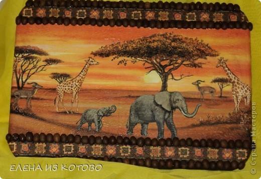 надоевшая всем африка  фото 1