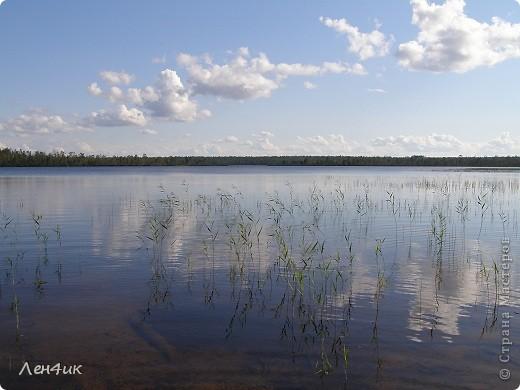 Решили мы отдохнуть на карельских озерах. Рыбки половить. Пожить в почти диких местах. Дорога встретила нас неласково и ничего хорошего не предвещала. фото 17