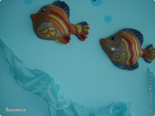 рыбки. фото 1