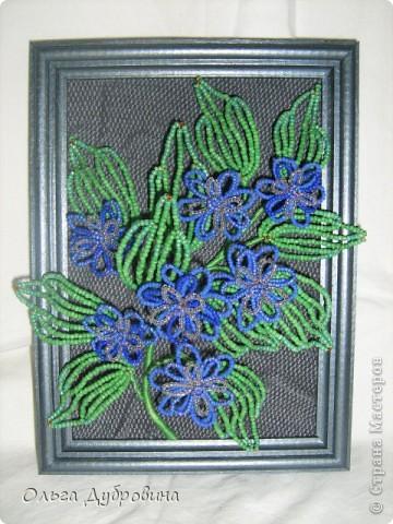 Знакомьтесь, это голубой цветок. Фон - двойной (шифон и плотная ткань такого же цвета). фото 9