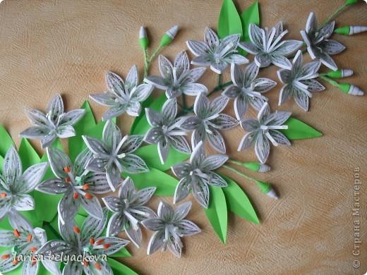 Лилии на заказ фото 2