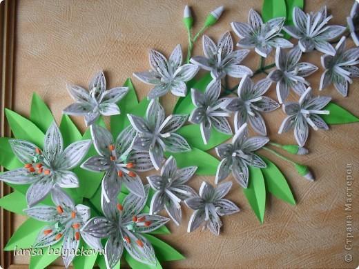 Лилии на заказ фото 3