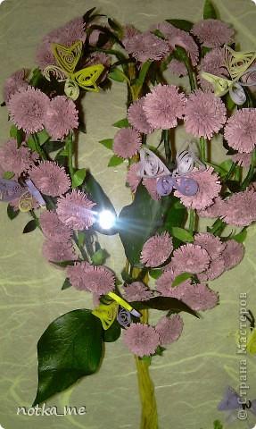 Райское дерево фото 3