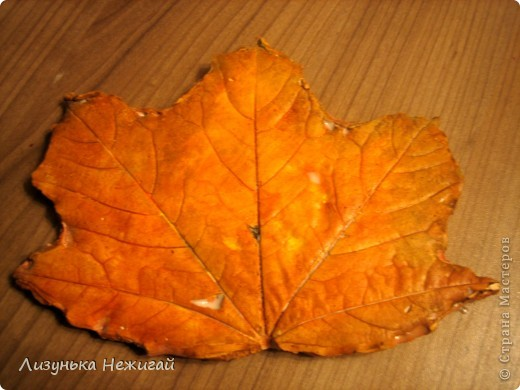 гипсовые листочки клёна фото 1