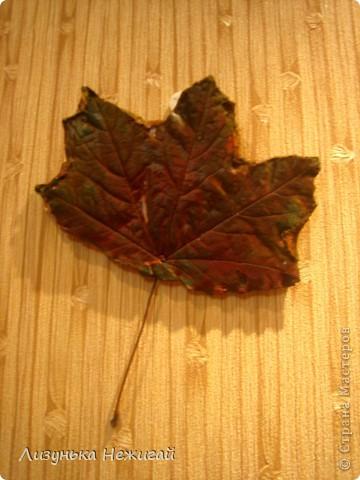 гипсовые листочки клёна фото 7