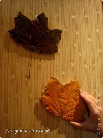 гипсовые листочки клёна фото 6