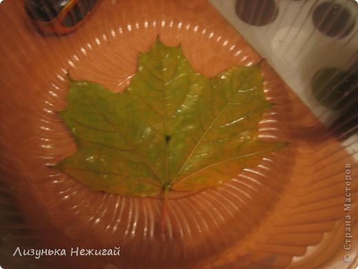 гипсовые листочки клёна фото 2