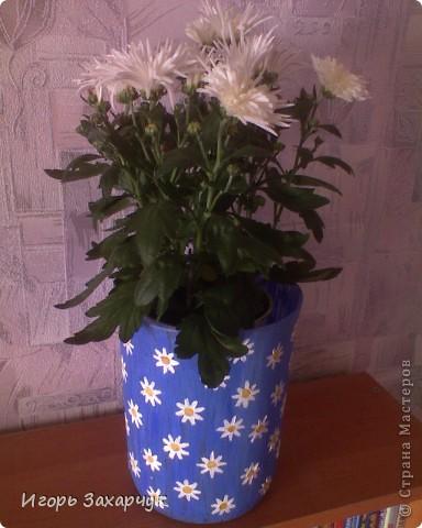 Кашпо для хризантемы