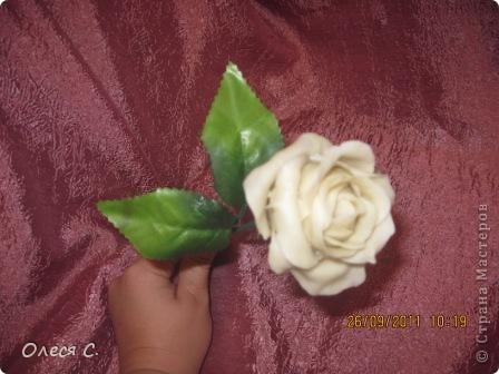 Первая моя роза из холодного фарфора размером с настоящюю))) фото 1