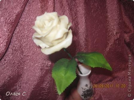 Первая моя роза из холодного фарфора размером с настоящюю))) фото 2