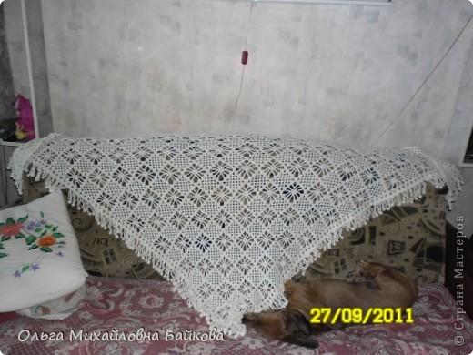 Узор шали. фото 3