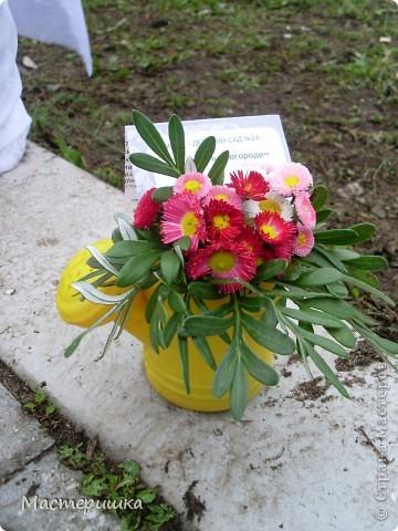 В первые дни сентября нашей семье посчастливилось поучаствовать в городской выставке цветов. А самое главное, было интересно наблюдать за нашим младшим сыном (мы представляли его садик).  фото 5