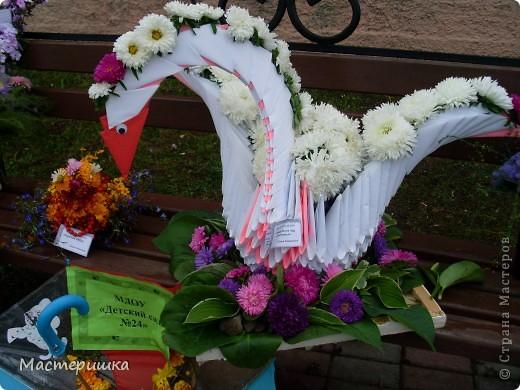 В первые дни сентября нашей семье посчастливилось поучаствовать в городской выставке цветов. А самое главное, было интересно наблюдать за нашим младшим сыном (мы представляли его садик).  фото 9