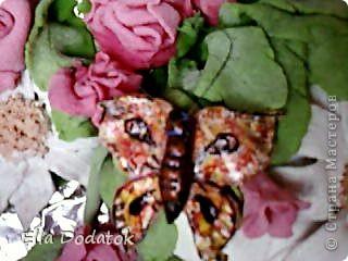 мои бабочки фото 2