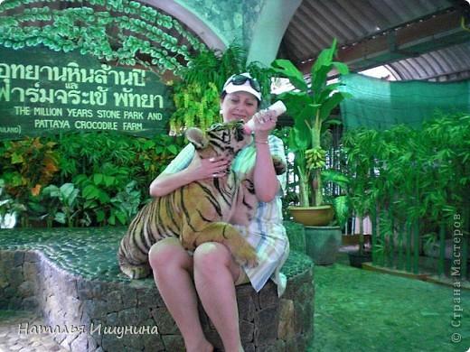 Сегодня выдался свободны день, много гуляла по стране. Увидела много интересных репортажей и фотоотчетов! Насладилась красотой других мест! Решила поделиться своим отчетом и впечатлением от Таиланда фото 13