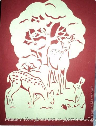 Знакомьтесь - Северный Олень. С тех пор как пронесся о нем слух в ближайшем заповеднике, нет покоя молоденьким лесным оленям и косулям.  Все мечтают быть похожим на него - гордым, свободным, красивым!  фото 2