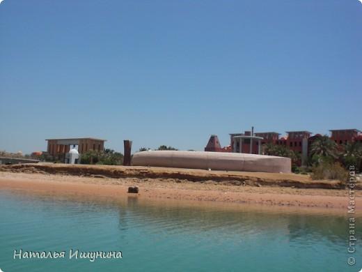 Думаю что Египтом не удивишь никого. Да и, после революции, страна не та! Не стала даже выставлять Хургаду.... Что всегда восхищает-это Красное море и природа.  Вот решила поделится красотой, которая запомнилась мне. На этой фотографии не я, приятельница!  я так и не опустилась с аквалангом. Но красота............ фото 25