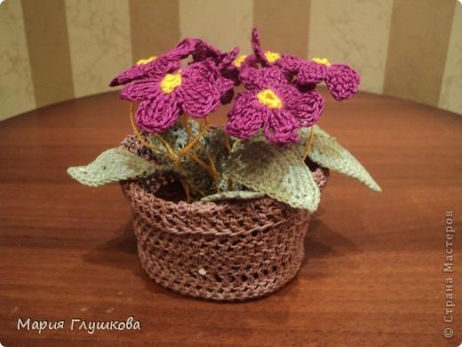 Здравствуйте, мастерицы! Представляю на ваш суд мою очередную работу - вязаные цветы. Это подарок для моей бабушки в честь 55-летия. Она очень любит цветы. Пусть они и не живые , но в каждую петельку вложена частичка моего тепла и я думаю бабушке будет очень приятно.  фото 3