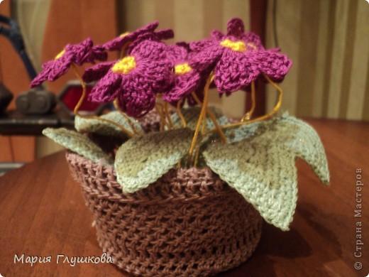 Здравствуйте, мастерицы! Представляю на ваш суд мою очередную работу - вязаные цветы. Это подарок для моей бабушки в честь 55-летия. Она очень любит цветы. Пусть они и не живые , но в каждую петельку вложена частичка моего тепла и я думаю бабушке будет очень приятно.  фото 1