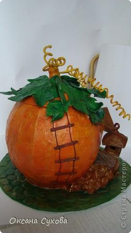 "Осень на дворе...У меня на ""огороде"" созрела вот такая тыква!!!! фото 5"
