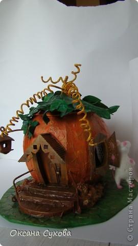 "Осень на дворе...У меня на ""огороде"" созрела вот такая тыква!!!! фото 9"