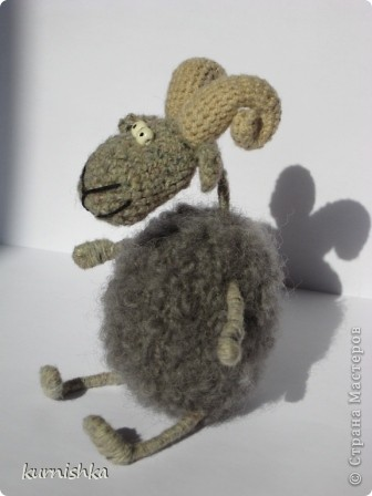 беедные овечки фото 6