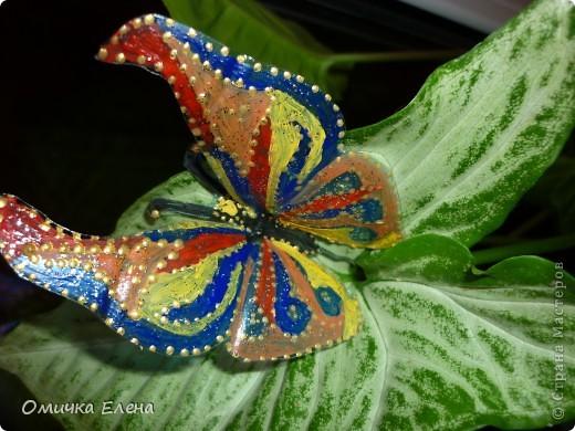 Давно засматривалась на бабочек из бросового материала.И вот вчера решила все-таки такую вырезать.Благодаря МК Оленьки Д. теперь и у меня на цветке поселилась бабочка.И я думаю скоро у нее появятся подружки.