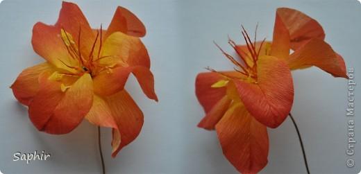 Сегодня сделались вот такие цветочки. Всё началось с того, что у меня появилась гофробумага, да не простая, а радужной расцветки.  фото 7